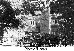 place_of_hawks